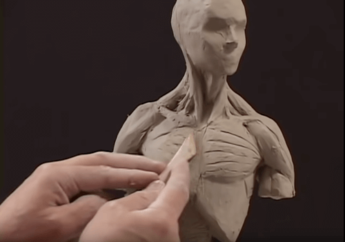 Sculpting out the musculature details